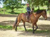 jazda na koni v Banskej Štiavnici