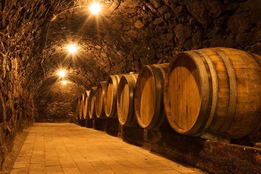 Ochutnávka vín