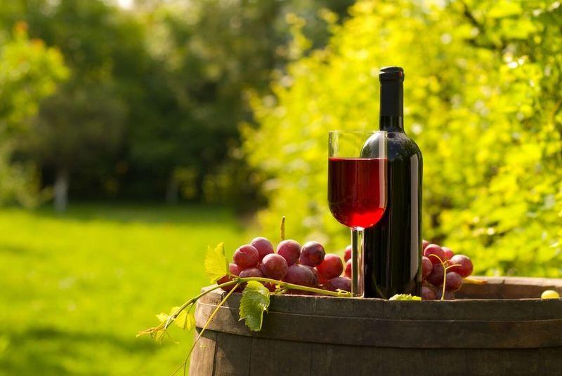 Prehliadka rodinného vinárstva s degustáciou vín
